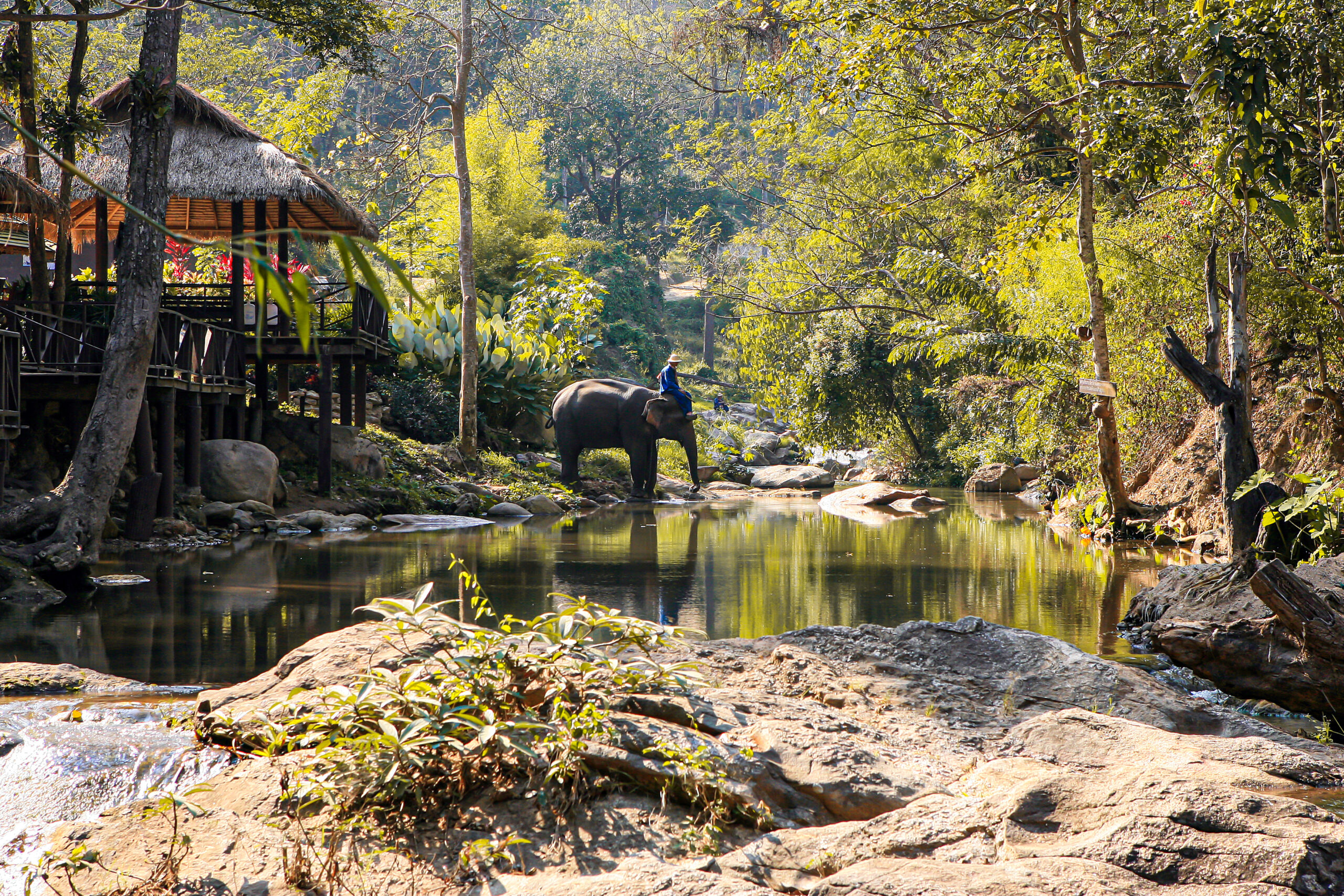 17. 10 Day Great North Thailand Tour 1