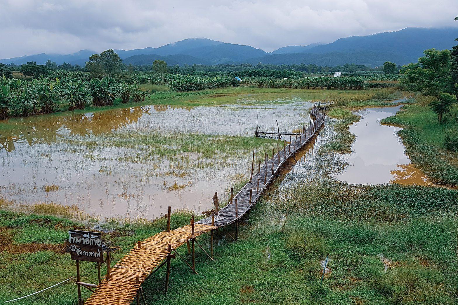 TBT t 0028 thai culture thai bike tours 0240